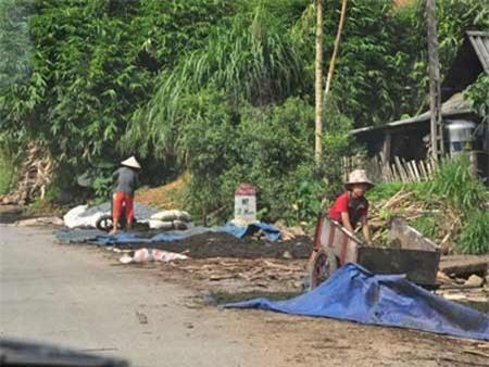 Chè được phơi ngay tại lề đường có đảm bảo vệ sinh?