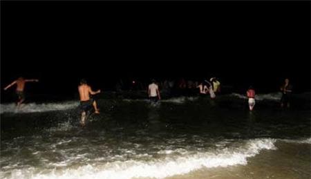 Giải cứu, cá voi, mắc cạn, đảo Cô Tô