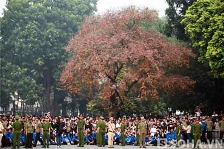8h38p ngày 13/10, khi linh xa của Đại tướng Võ Nguyên Giáp đi trên phố Hoàng Diệu, cây Bằng lăng đã rụng mất rất nhiều lá đỏ, cành lá đã bắt đầu thể hiện sự khô héo.