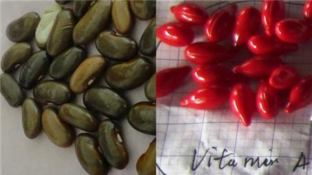 <br /><br /> Hạt đậu và viên Vitamin A mà ông Hùng nhầm lẫn.