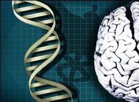 1/5 dân số thế giới mang gen thông minh, sống thọ
