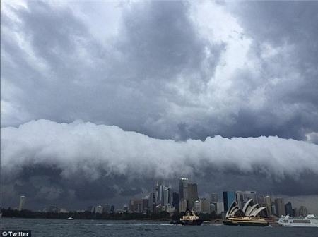 """Sydney bất ngờ bị cơn bão mùa hè """"tấn công"""" 4"""
