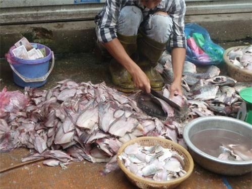 cá thối, thực phẩm bẩn