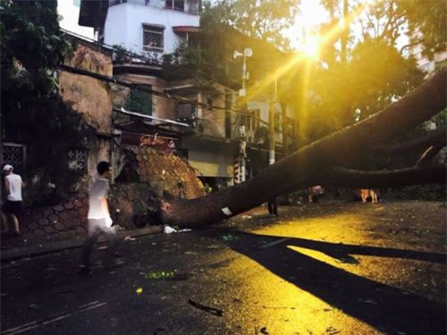 Cận cảnh Hà Nội thành bãi chiến trường sau cơn bão thổi cây bật vỉa hè, lật xe tải - Ảnh 10