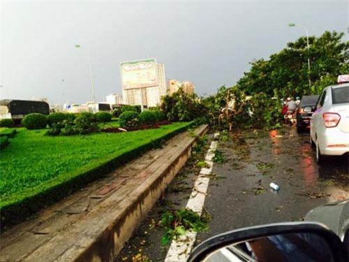 Cận cảnh Hà Nội thành bãi chiến trường sau cơn bão thổi cây bật vỉa hè, lật xe tải - Ảnh 11