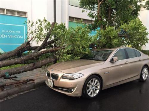 Cận cảnh Hà Nội thành bãi chiến trường sau cơn bão thổi cây bật vỉa hè, lật xe tải - Ảnh 13