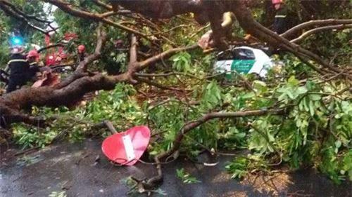 Cận cảnh Hà Nội thành bãi chiến trường sau cơn bão thổi cây bật vỉa hè, lật xe tải - Ảnh 16