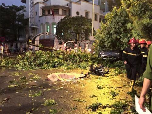 Cận cảnh Hà Nội thành bãi chiến trường sau cơn bão thổi cây bật vỉa hè, lật xe tải - Ảnh 17