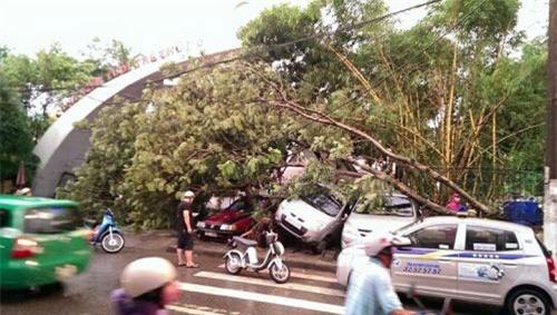 Cận cảnh Hà Nội thành bãi chiến trường sau cơn bão thổi cây bật vỉa hè, lật xe tải - Ảnh 19