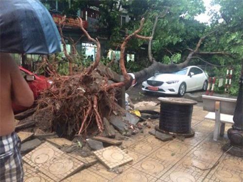 Cận cảnh Hà Nội thành bãi chiến trường sau cơn bão thổi cây bật vỉa hè, lật xe tải - Ảnh 3