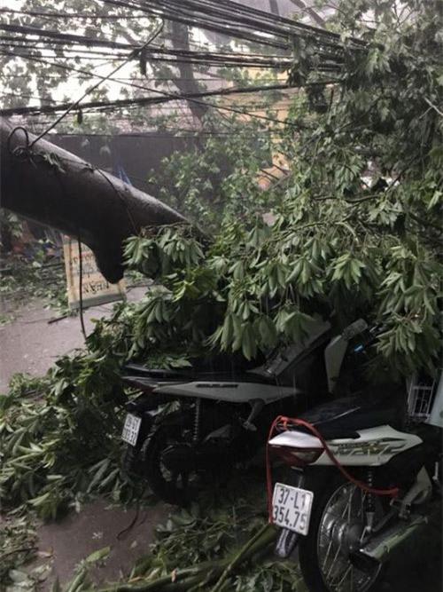 Cận cảnh Hà Nội thành bãi chiến trường sau cơn bão thổi cây bật vỉa hè, lật xe tải - Ảnh 8