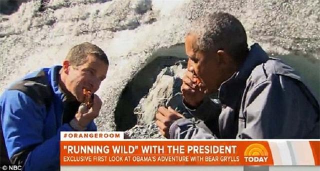Obama ăn cá thừa của gấu trong thử thách sinh tồn