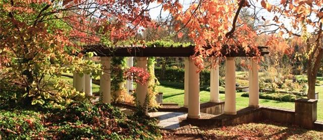 Những đại học đẹp nhất nước Mỹ vào mùa thu
