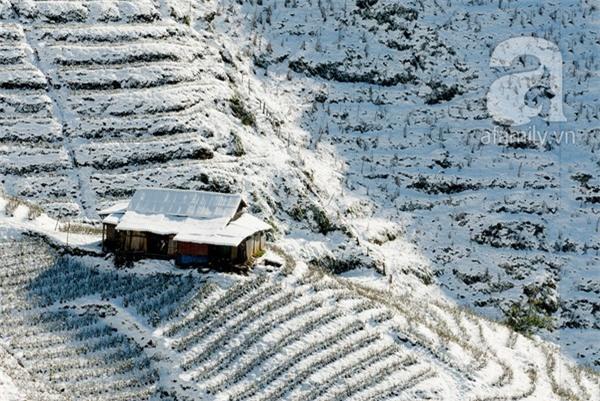 Những hình ảnh tuyết trắng đẹp lạ thường ở Sapa 3