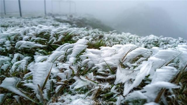 băng tuyết, tuyết, rét kỷ lục, Mẫu Sơn, Sa Pa