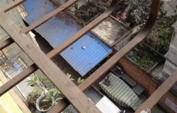 Người dân phẫn nộ phát hiện một bé sơ sinh bị bỏ rơi, chết trên mái nhà - Ảnh 2.