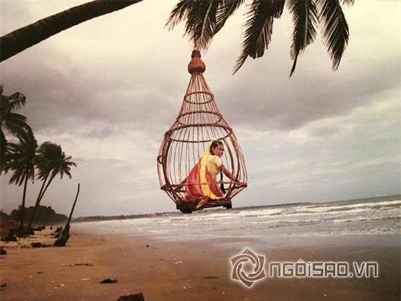Nguyễn Hoàng 13
