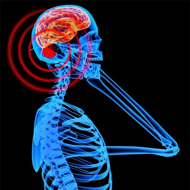 Kết luận khoa học: Điện thoại di động không gây ung thư não - Ảnh 1.