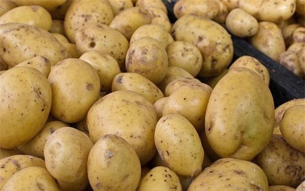 Ăn quá nhiều khoai tây làm tăng nguy cơ cao huyết áp - Ảnh 2.