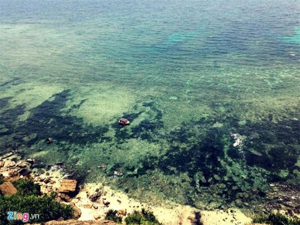 Lý Sơn - thiên đường giữa đại dương - Ảnh 3