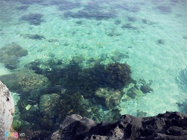Lý Sơn - thiên đường giữa đại dương - Ảnh 12