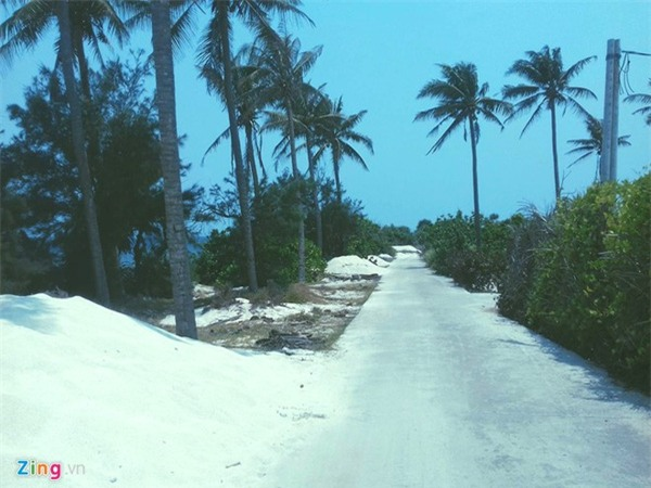 Lý Sơn - thiên đường giữa đại dương - Ảnh 15