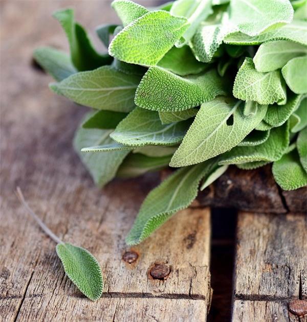 9 cách khử mùi hôi chân cực hiệu quả bằng nguyên liệu rẻ tiền