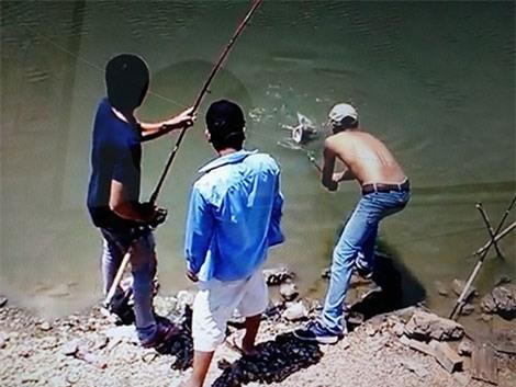 cá khổng lồ, câu cá khổng lồ, sông chảy ngược, cần thủ, câu cá, cá lăng khổng lồ, cá sông