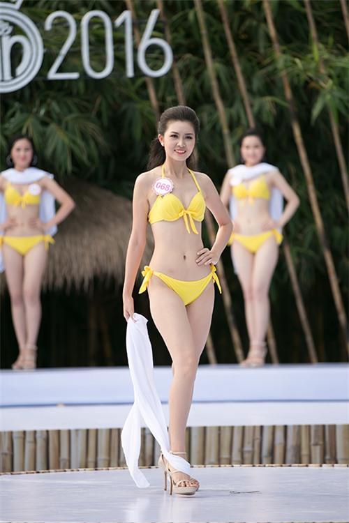 thi-sinh-trinh-dien-bikini-tiep-9