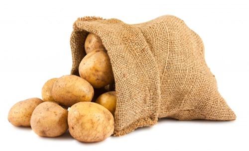 Cảnh báo tác hại khi ăn khoai tây xanh - Ảnh 1.