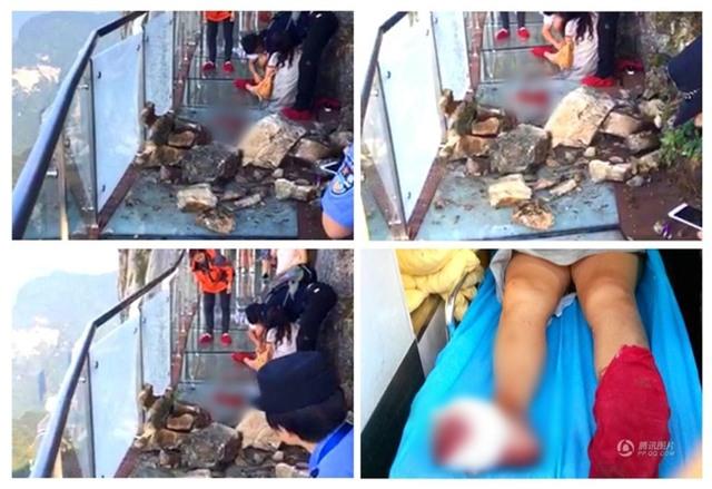 Đang tham quan cầu kính cao nhất thế giới, nữ du khách gặp tai nạn đá rơi liểng xiểng - Ảnh 1.