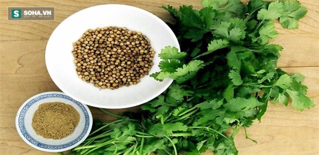 Người dân Ấn Độ tôn vinh rau mùi là thảo dược kỳ diệu - Ảnh 1.