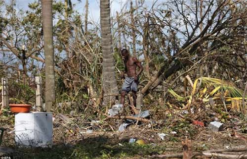 Cảnh hoang tàn và chết chóc ở Haiti sau cơn bão lịch sử Matthew - 13