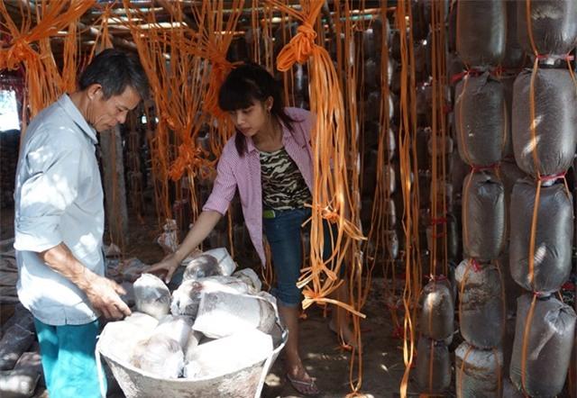 Từ người làm thuê trở thành chủ trang trại nấm tiền tỷ - Ảnh 2.