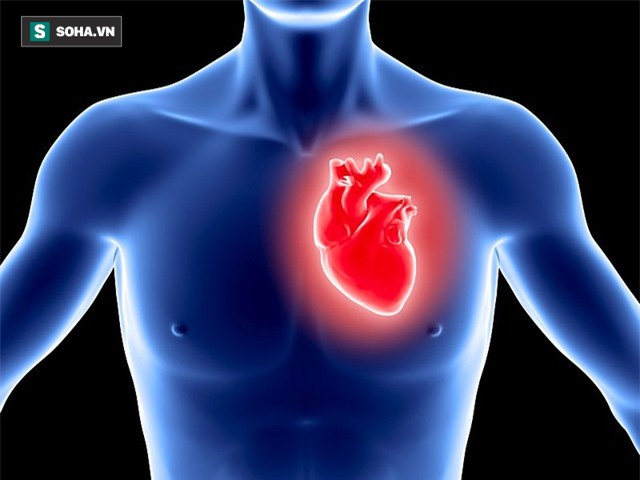 Nhồi máu cơ tim: Bệnh gây tử vong trong vài giờ nhưng lại cảnh báo trước đó 1 tháng - Ảnh 1.