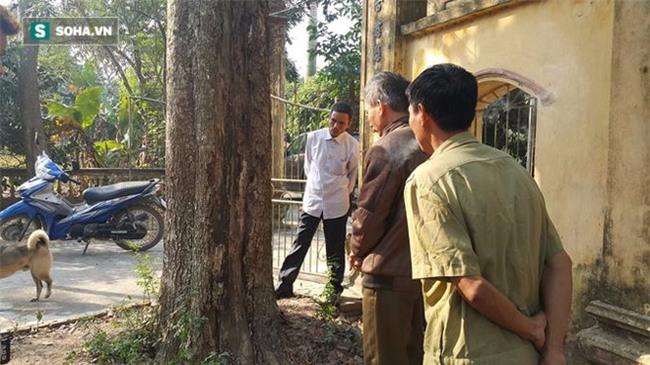 Cận cảnh cây sưa 50 tỷ trong vụ đánh nhau chảy máu đầu tại cuộc họp ở Bắc Ninh - Ảnh 9.