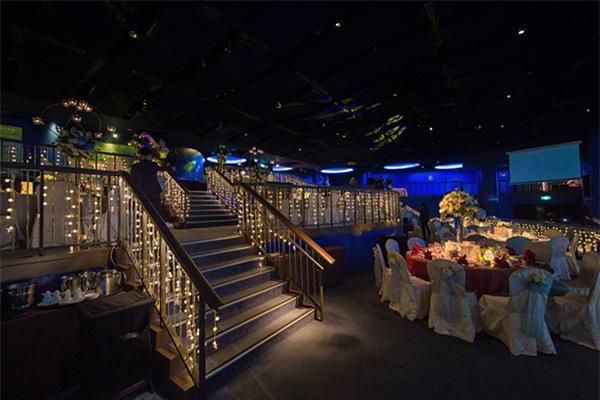 Cô dâu Việt chi gần 2 tỷ đồng bao trọn thủy cung lớn nhất thế giới làm đám cưới - Ảnh 11.