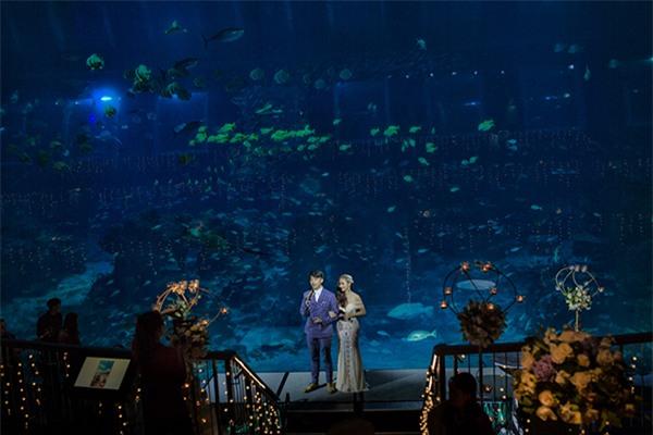 Cô dâu Việt chi gần 2 tỷ đồng bao trọn thủy cung lớn nhất thế giới làm đám cưới - Ảnh 2.