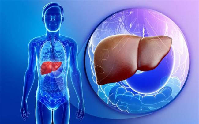 9 dấu hiệu cảnh báo và 3 bước thải độc gan ai cũng phải biết để bảo vệ cả gan và tim - Ảnh 2.