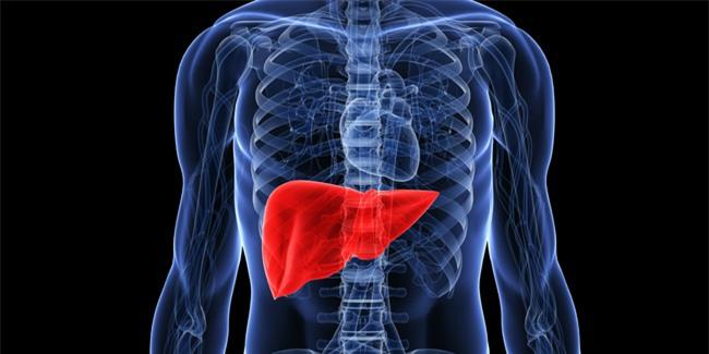 9 dấu hiệu cảnh báo và 3 bước thải độc gan ai cũng phải biết để bảo vệ cả gan và tim - Ảnh 4.