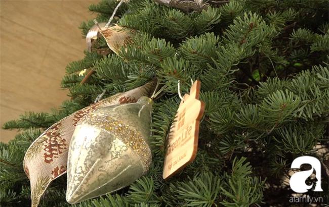 Cận Giáng sinh, cây thông Noel thật nhập từ Mỹ, giá bạc triệu vẫn hút hàng ở Sài Gòn - Ảnh 4.