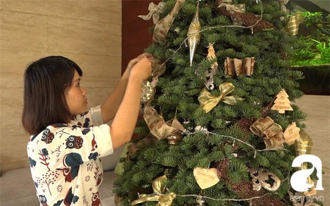 Cận Giáng sinh, cây thông Noel thật nhập từ Mỹ, giá bạc triệu vẫn hút hàng ở Sài Gòn - Ảnh 5.