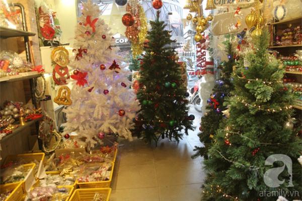 Cận Giáng sinh, cây thông Noel thật nhập từ Mỹ, giá bạc triệu vẫn hút hàng ở Sài Gòn - Ảnh 8.