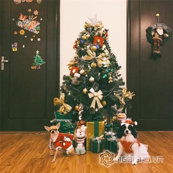 Sao Noel 2016 4