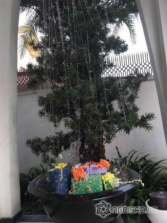 Sao Noel 2016 10