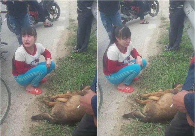 Cô bé khóc nức nở bên cạnh chú chó bị tai nạn ngày cuối năm gây bão mạng - Ảnh 2.