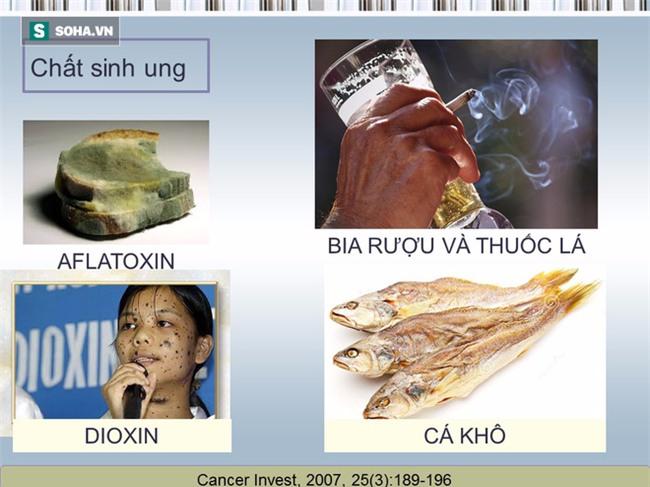 Tài liệu hướng dẫn cách ăn uống phòng chống ung thư [BS Trần Thị Anh Tường, BV Ung bướu TP.HCM] - Ảnh 9.
