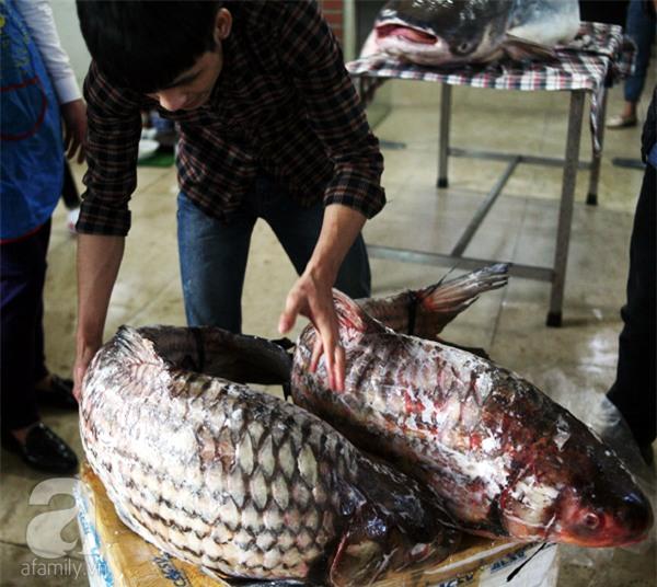 Nhà giàu Hà Nội bỏ cả trăm triệu mua cá khổng lồ về ăn Tết - Ảnh 13.