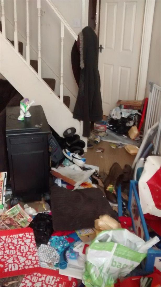 Video: Khung cảnh kinh hoàng bên trong căn nhà nơi 2 chú chó bị bỏ đói tới chết - Ảnh 4.