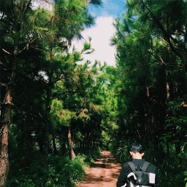 Những điểm đến khiến dân xê dịch phát sốt bởi xuất hiện quá đẹp trong MV ca nhạc - Ảnh 6.